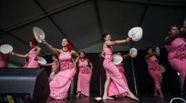 auckland-international-cultural-festival-2017_2
